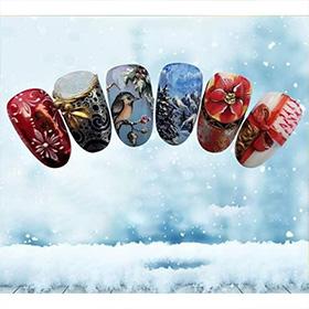 poza_mica_descriere_vis_de_iarna